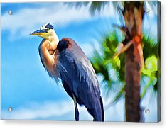 Acrylic Print featuring the photograph Heron And Palms by Pamela Blizzard