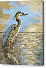 Acrylic Print featuring the painting Heron At Bay by VLee Watson