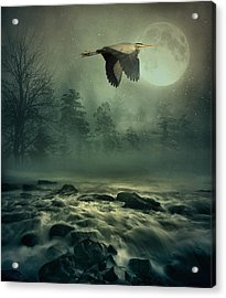 Heron By Moonlight Acrylic Print
