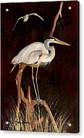 Heron In Tree Acrylic Print