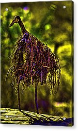 Acrylic Print featuring the photograph Heron Totem by Gary Holmes