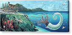 Heteromorph Ammonite Attack Acrylic Print by Richard Bizley