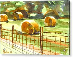 Hey Bales In The Afternoon Acrylic Print by Kip DeVore