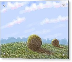 Hey I See Hay Acrylic Print by Stacy C Bottoms