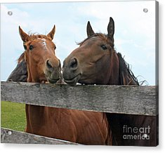Hey You Come Here Acrylic Print