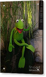 Hi Ho  Kermit The Frog Here  Acrylic Print by Jim McCain