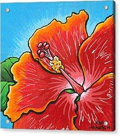 Hibiscus 06 Acrylic Print