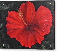 Hibiscus Beauty Acrylic Print