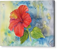 Acrylic Print featuring the painting Hibiscus  by Janina  Suuronen