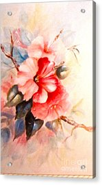 Hibiscus Acrylic Print by Patricia Schneider Mitchell