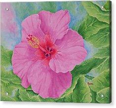 Hibiscus Acrylic Print by Rhonda Leonard