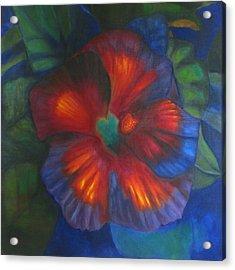Hibiscus Acrylic Print by Susan Hanlon