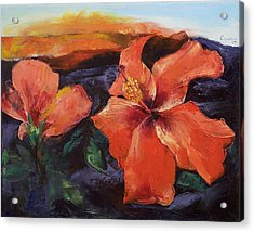 Hibiscus Volcano Acrylic Print