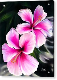 Hibiscuses Acrylic Print by Laura Bell
