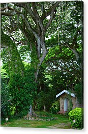 Hidden Cottage Acrylic Print