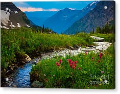Hidden Lake Pass Acrylic Print by Inge Johnsson