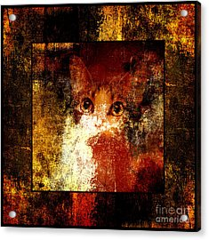 Hidden Square Acrylic Print