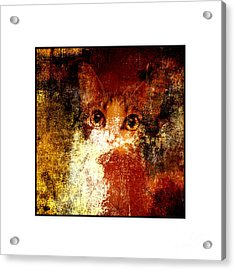 Hidden Square White Frame Acrylic Print
