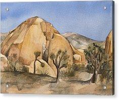 Hidden Valley In Joshua Tree Acrylic Print by Lynne Bolwell
