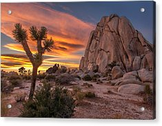 Hidden Valley Rock - Joshua Tree Acrylic Print by Peter Tellone