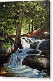 Hidden Waterfall Acrylic Print by Carol Hart