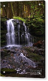 Hidden Waterfalls Of Wayne County I Acrylic Print