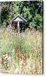 Hidden Wishing Well Acrylic Print by Christy Patino