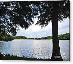 Higgins Lake In The Summer Acrylic Print by Nancy E Stein