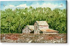 High Cotton Acrylic Print