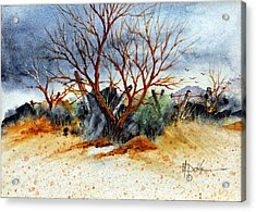 High Desert Experience Acrylic Print