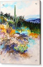 High Desert Scene 2 Acrylic Print