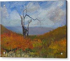 High Fall Acrylic Print by William Killen