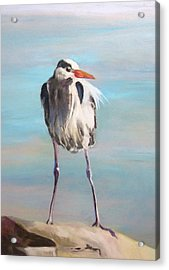 High Falls Heron Acrylic Print by Debbie Anderson