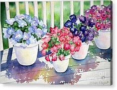 High Noon Petunias Acrylic Print by Deborah Ronglien