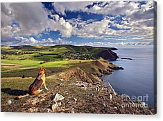 High On A Hill Top Acrylic Print