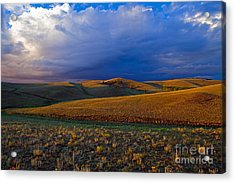 High Plains Drama Acrylic Print