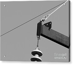 Acrylic Print featuring the photograph High Power Line - 7 by Kenny Glotfelty