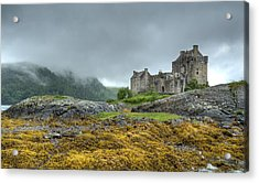 Highland  Acrylic Print by John Hickson