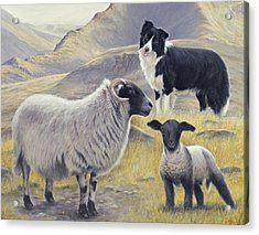 Highland Spirit Acrylic Print
