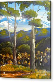 Highlands Gum Trees Acrylic Print by Pamela  Meredith