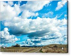 Highway 132 Acrylic Print by John Crowe