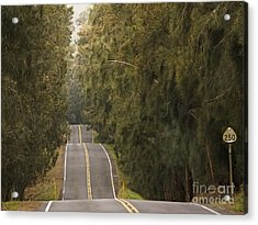 Highway 250 Acrylic Print by Inge Riis McDonald