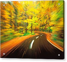 Highway Amidst Forest Acrylic Print