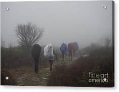 Hikers Going Into The Fog At Dolly Sods Acrylic Print by Dan Friend