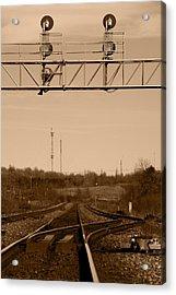 Hikin' The Tracks Acrylic Print by Paul Wash