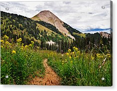 Hiking In La Sal Acrylic Print by Adam Romanowicz