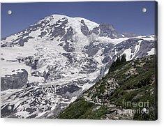 Hiking Mt Rainier Acrylic Print