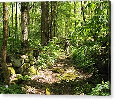 Hiking Off Trail Acrylic Print by Melinda Fawver