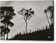Acrylic Print featuring the photograph Hill by Amarildo Correa