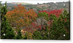 Hill Country Splash Acrylic Print by David  Norman